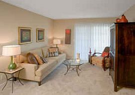 Luxurious Newly Renovated Apartments