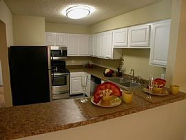 Beautiful 2 bedroom apartment that is newly remodeled