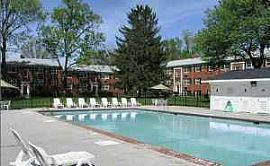 Beautiful 1 BR, 1 BA Apartment For Rent