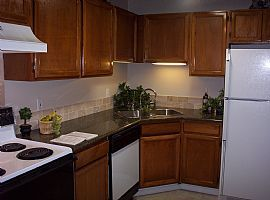 Sharp, Remodeled 1 Bedroom Condo in Great Location