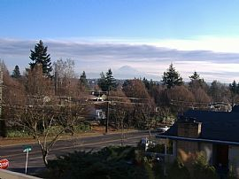 Spacious 1 Bedroom Apartment with View in West SeattlE - $690