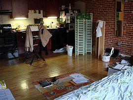 Immediate 1 Bedroom Sublet Available For Feb. 1 Move-In