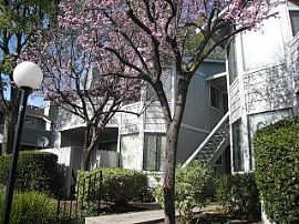 Luxurious 2 Bedroom Condo with 1200 sq. ft. in Warm Springs
