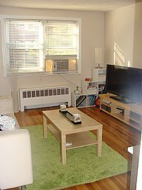 Beautiful 1 Bedroom Condo Apartment with Heat and Water Included