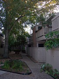 Recently Updated 2 Bedroom Condo on Ground Level