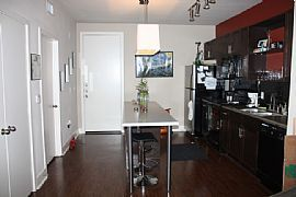 Need to Lease Asap - Brand New Apartment